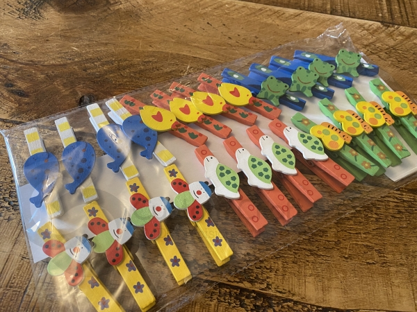 Set of 24 Decorated Pegs