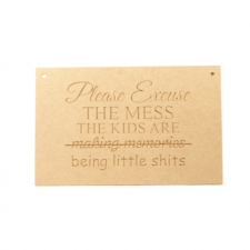 Hanging Plaque, 'Please excuse the mess...'