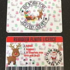 Reindeer Flying Licence (Plastic)