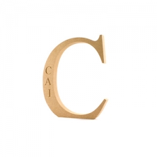 Times New Roman Font, Engraved Individual Freestanding Letter, 200mm (18mm)